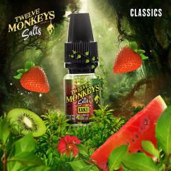 E-liquide Matata Salts -Twelve monkey