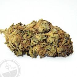 Fleur de CBD Strawberry Diesel-Fleur de chanvre